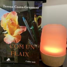 «Com un flaix» de Teresa Costa-Gramunt