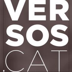 Dani Ruiz Trillo m'entrevista per a Versos.cat